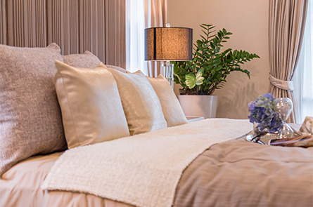 Bed and Breakfasts in Pinelands